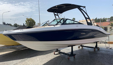 Sea Ray 210 SPX Outboard